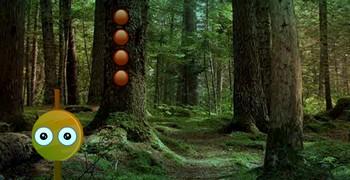 Выйти из непролазного леса