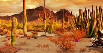 Найти карту в пустыне