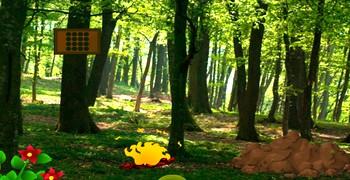 Дать дёру из зелёного леса