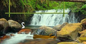 Оставить лес с водопадом