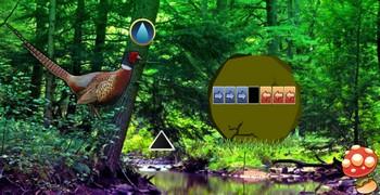 Мотай из леса с фазанами