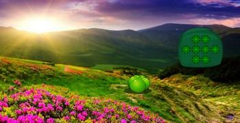 Утопать из цветочной долины