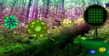 Наутёк из лесной среды обитания