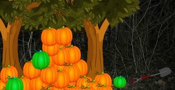 Маленькая турка в страшном лесу