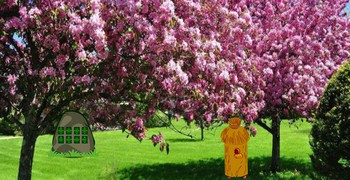Выйти из леса цветущей вишни