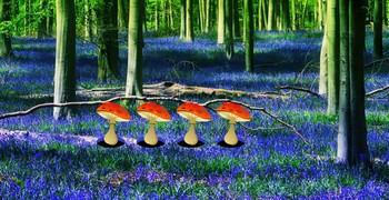 Как сбежать из цветочного леса