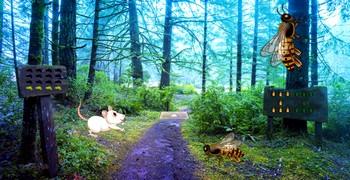 Побег из леса с осами-гигантами
