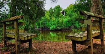 Парк с деревянными лавками. Побег