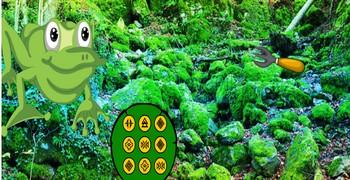Лес с гигантскими лягушками