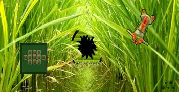 Квест в траве