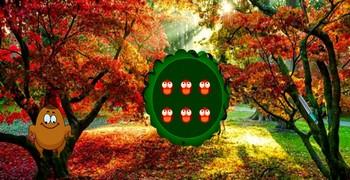 Лес в день благодарения