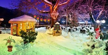 Рождественский олень замёрз