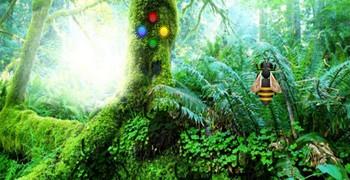 Как выйти из лиственного леса