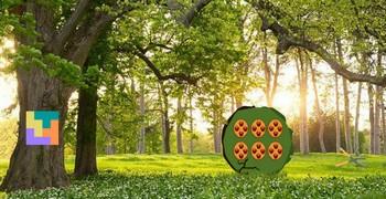 С лесного леса побег зелёный