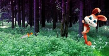 Истринская баня в лесу