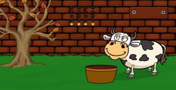 Как накормить корову
