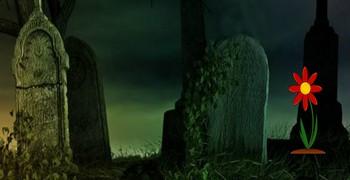 Чёрный кот с кладбища