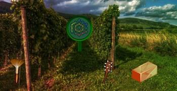 Как сбежать с фермы виноградной