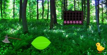 Странные фантазии в зелёном лесу