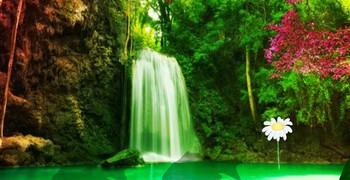 Лес фантастической реки