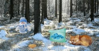 Зимние приключения в лесу